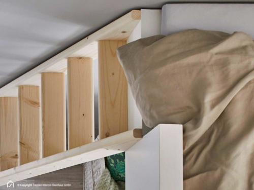 Holzleiter Intercon Safe Step